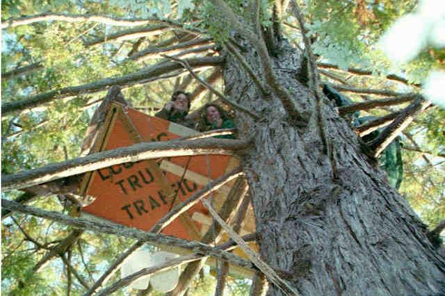 Two women in tree-sit &qu...