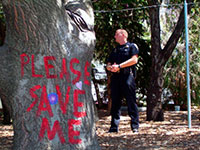 Berkeley Tree-sitters Coming Under Attack