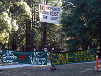 Santa Cruz Community Supports Tree-sitters