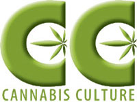 Facebook Removes Cannabis Culture Page and a Marijuana Proponent's Account