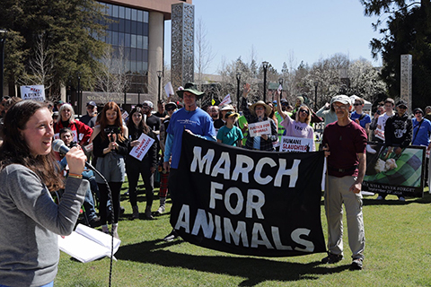 Animal Activists March for Animals in Santa Rosa