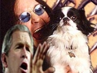 200_ozzy_and_bush_geek-off_final.jpg