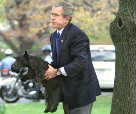 Rape Lawsuit Against President Bush Indybay