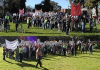 200_10_bluenred.jpg
