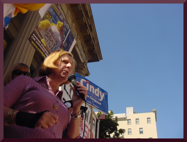 cindy_sheehan_protests_establishment_media.png