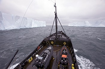 news_081223_steve_irwin_two_icebergs.jpg