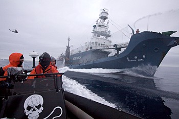 news_090201_1_2_sea_shepherd_crew.jpg