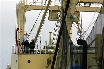 news_090201_2_1_japanese_whalers_aim_illegal_long_range_acoustic_device.jpg