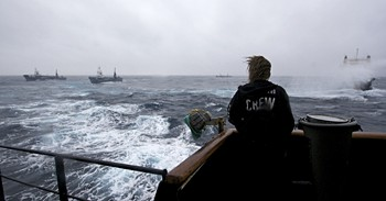 090204_steve_irwin_engages_japanese_harpoon_whaling_vessels.jpg