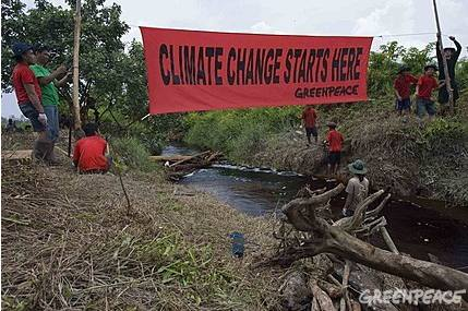 Photo: Greenpeace/ Ardiles Rante. Greenpeace activists and local volunteers attempt to halt drainage by constructing dams on the peatland canals