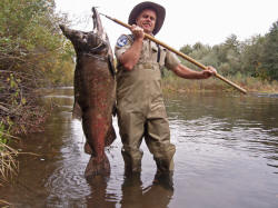 giant-salmon-battle-creek-2_small.jpg