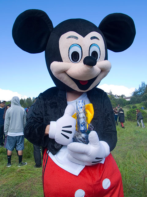 mickey-mouse-bong-ucsc_4-20-10.jpg