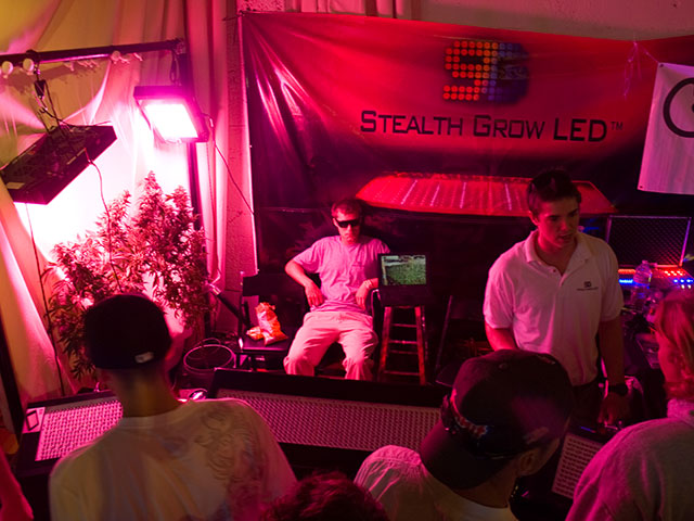 stealth-grow_6-19-10.jpg