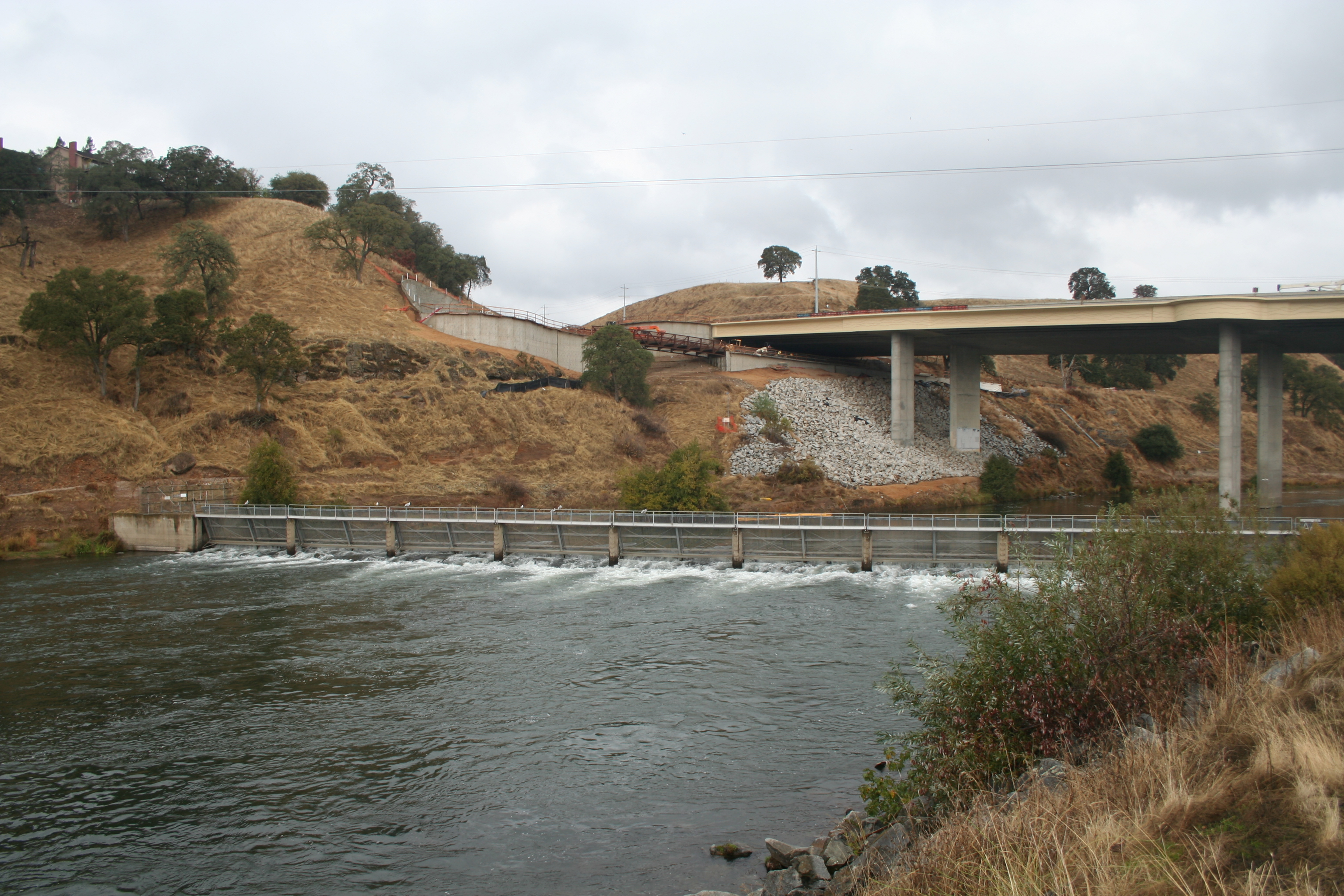 Mokelumne river fish hatchery for California fish hatcheries