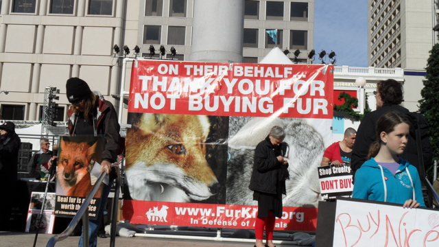 fur_free_friday_11-26-10_-_13.jpg