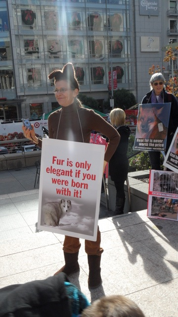 fur_free_friday_11-26-10_-_3.jpg