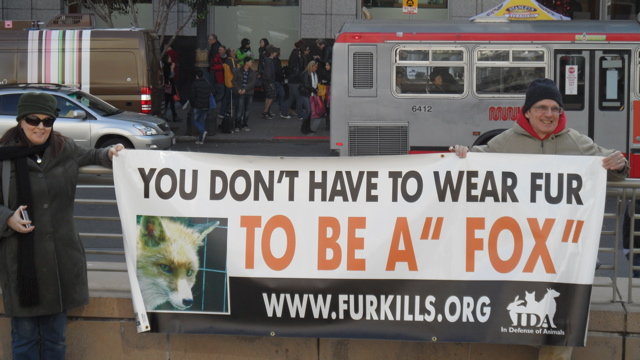 fur_free_friday_11-26-10_-_42.jpg