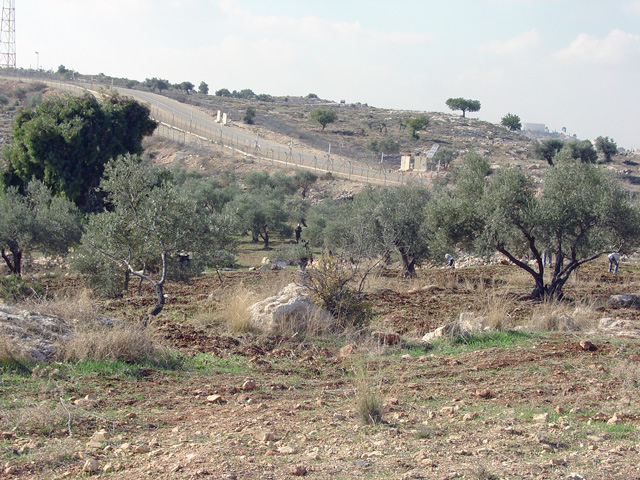 bilin_wallprotest_122410_1258_1.jpg