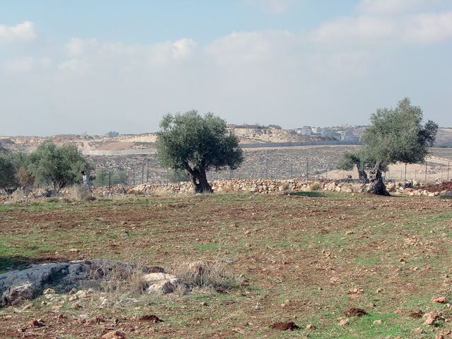 bilin_wallprotest_122410_1302.jpg