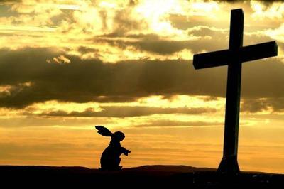 bunny-cross.jpg
