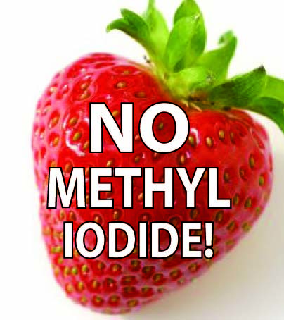 From Safe Strawberries to Safe Schools : Indybay