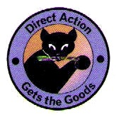 directaction.jpg
