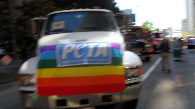 sf-pride-peta-animal_protection-vegetarian_community_contingent-062611_-_1.jpg