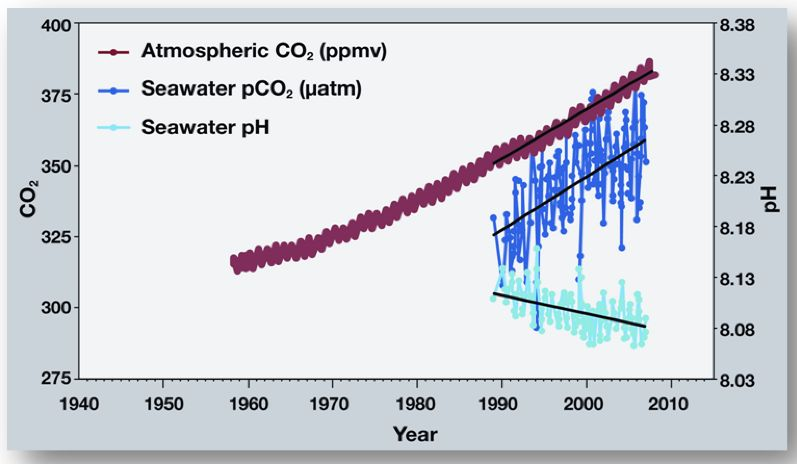 an analysis of the alarming threat of carbon dioxide in the atmosphere Discover all statistics and data on global climate change now on  gas concentrations in the atmosphere,  the production of carbon dioxide,.