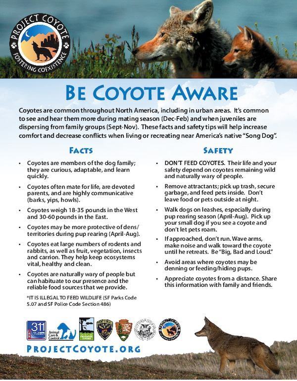 be_coyote_aware_flyer__color_sf_logos_1_.pdf_600_.jpg