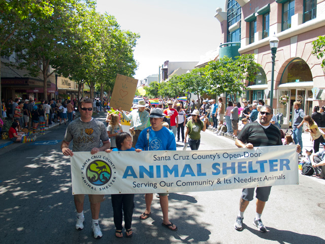 santa-cruz-county-animal-shelter_6-3-12.jpg