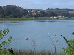 240px-lake_merced_at_sfsu-2.jpg