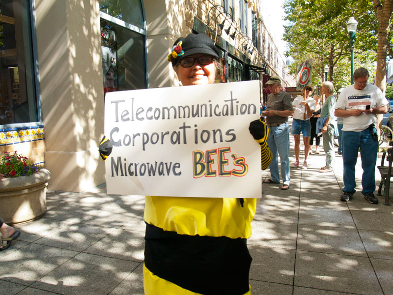 telecommunication-corporations-microwave-bees_2_7-21-12.jpg
