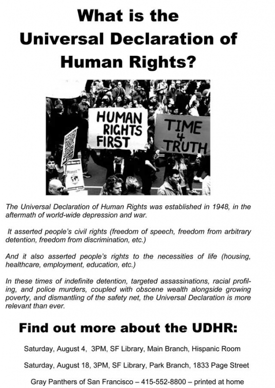 800_2012-07-29-michael--udhr-poster-of-ndaa-meeting.jpg original image ( 640x904)