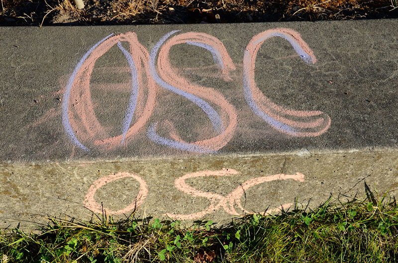 chalkupy-occupy-santa-cruz-august-8-2012-14.jpg