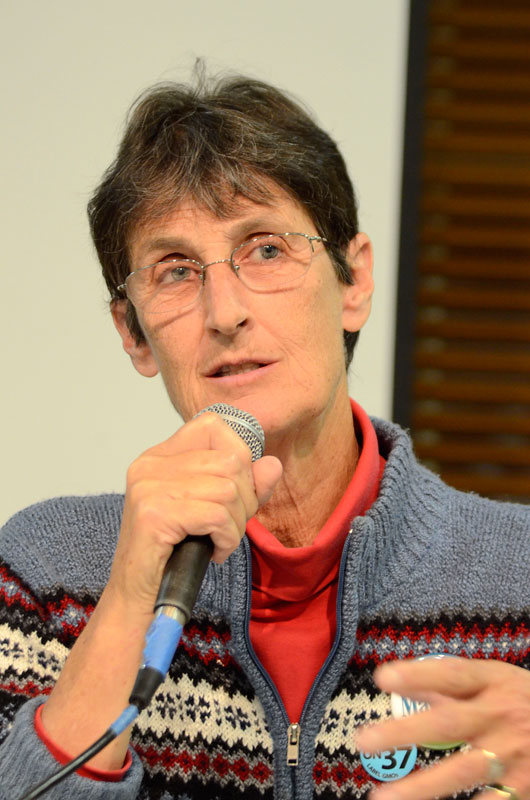 cynthia-mathews-water-forum-santa-cruz-council-candidates-september-27-2012-7.jpg