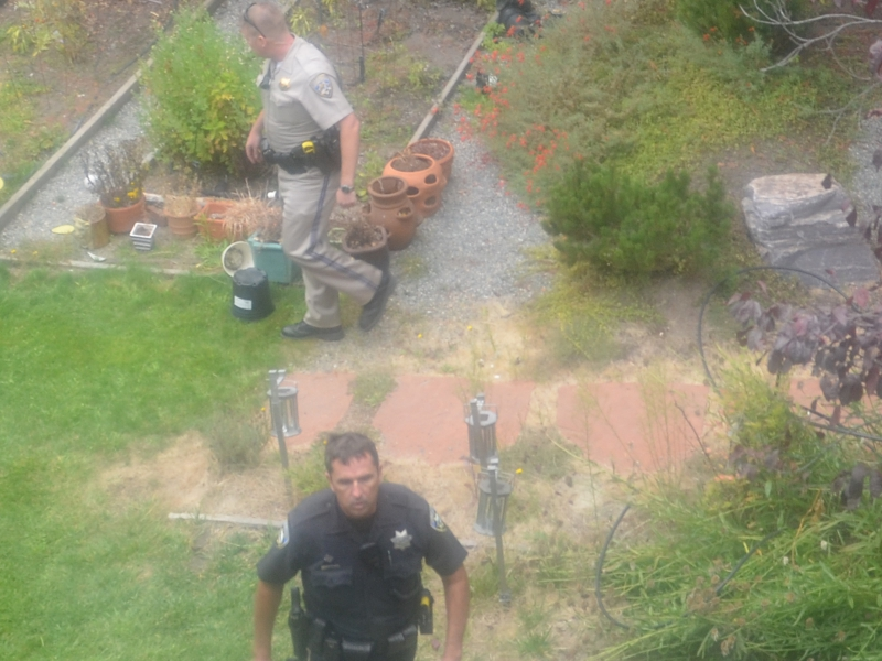 800_two_cops_backyard.jpg original image ( 1600x1200)
