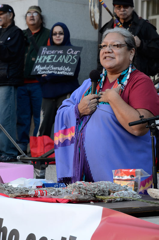 lakota-harden-idle-no-more-january-26-2013-21.jpg