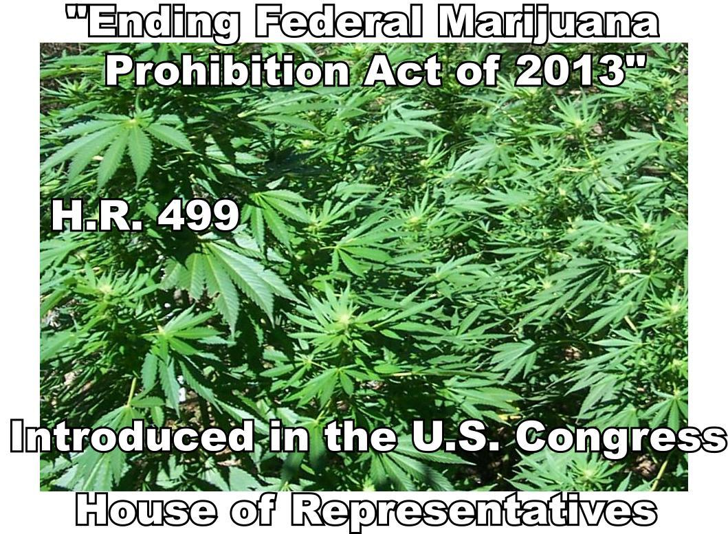 federal marijuana prohibition act Gabbard is now calling on congress to pass hr 1227, the ending federal  marijuana prohibition act, which removes marijuana from the.