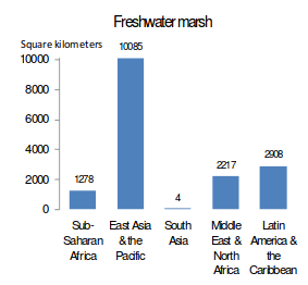 20130301_lost_freshwater_wetlands_by_type_and_region.png