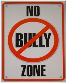 no_bully_zone.jpeg