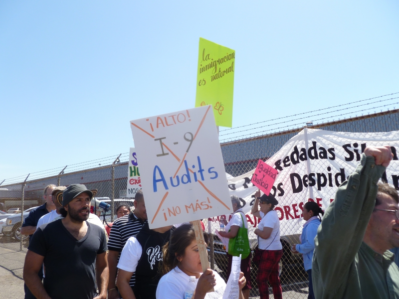 800_oakland_bakery_immigration_picket.jpg