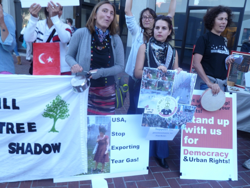 800_turkey_berkeley_rally6-6-13.jpg