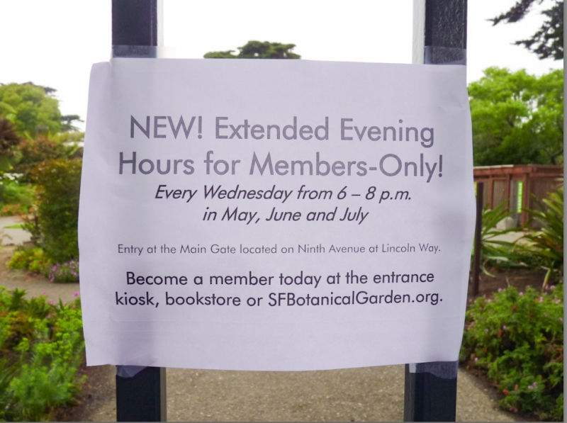 800_extended_hours.jpg original image (978x731)