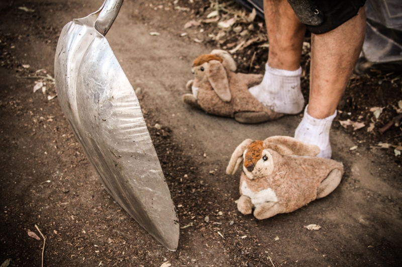 800_hayes_valley_farm_bunny_slippers.jpg
