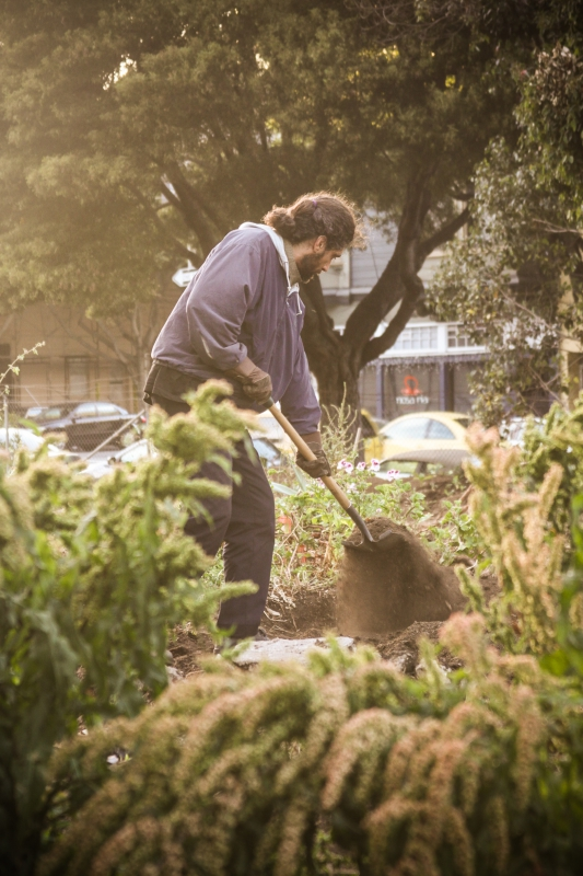 800_hayes_valley_farm_gardener.jpg