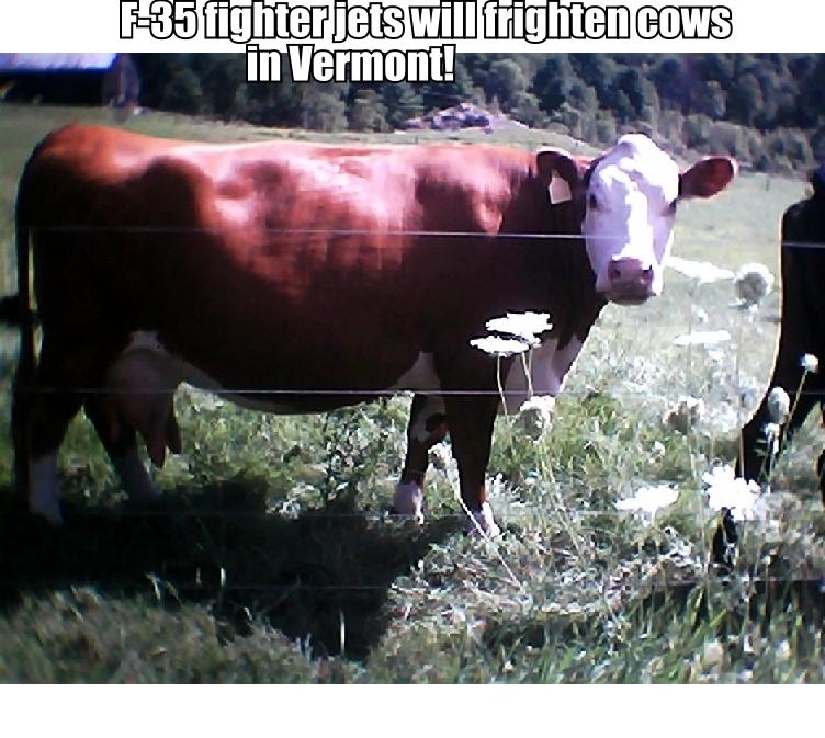 cow_poster_aug_11_2013.jpg