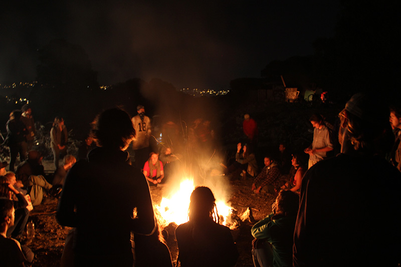 albanybulbsolidaritycampout_oct022013.jpg