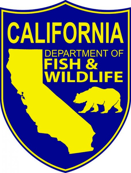 california_department_fish_wildlife.jpg