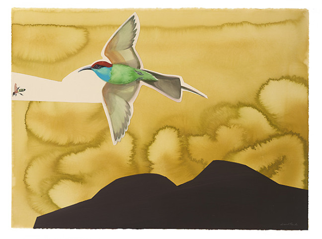 blue_throated_bee_eater_collage_by_david_tomb.jpg