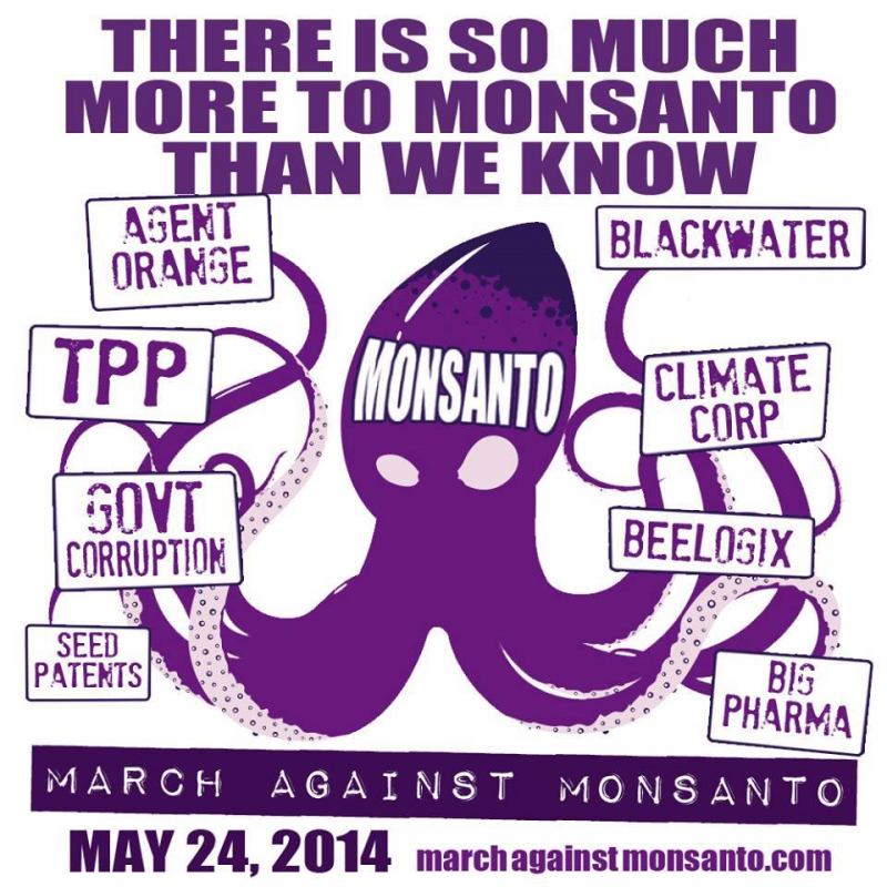 800_march_against_monsanto_2.jpg original image (960x960)